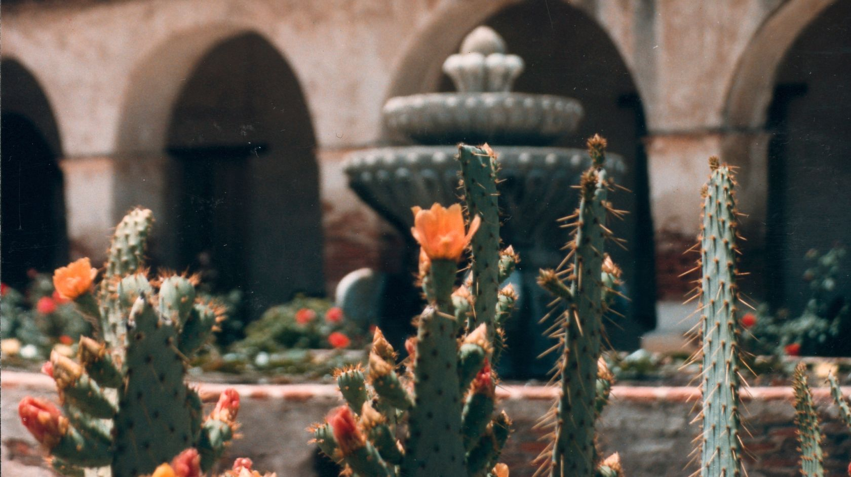 A Vase Of Flowers Sits In Front Of A Building